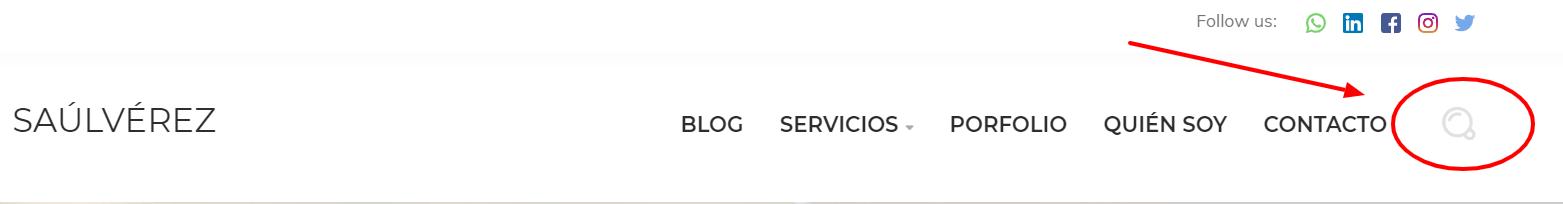 Búsqueda interna en web